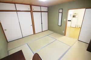 Internship in Japan SakuraHouse 12