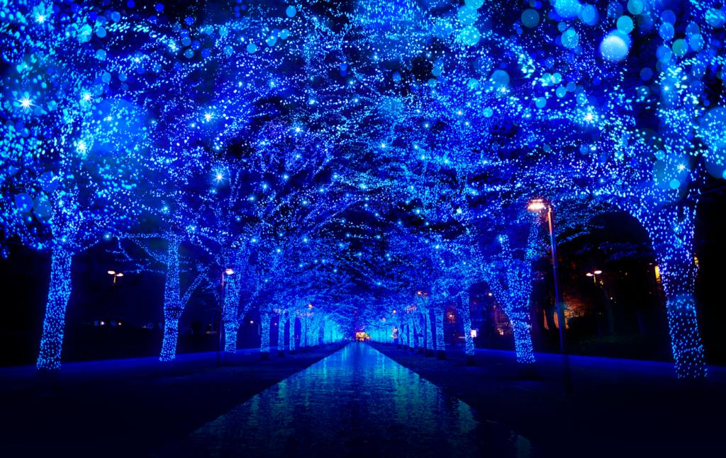 Tokyo Lights – Winter 2018