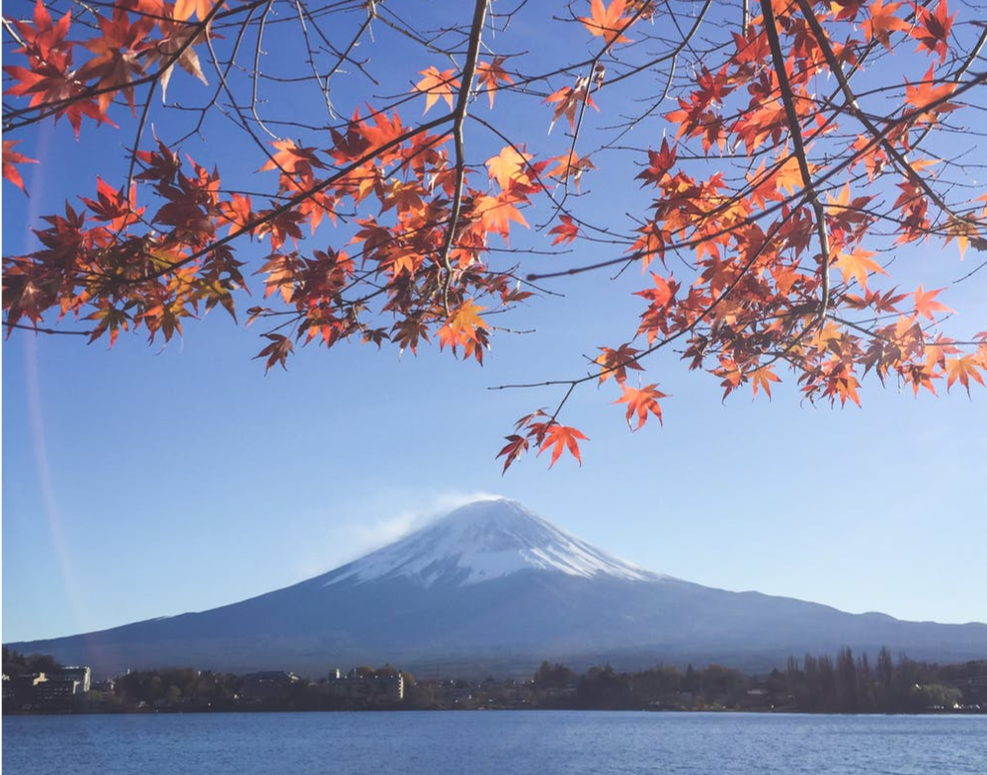 Things to Enjoy During the Fall in Japan
