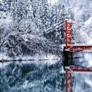 Internship in Japan Winter Program
